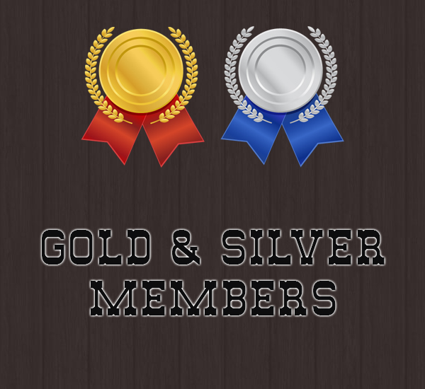 gold-silver-600x550-